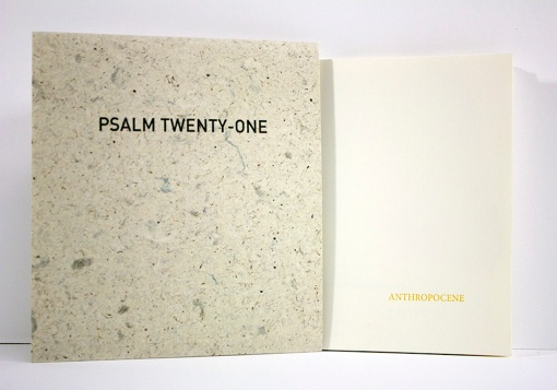 psalm 21 cover and sleeve