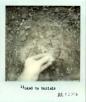 polaroid linked to burials